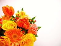 Spring Flower Arrangement Stock photo [1884730] Flower