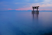 Shirahige shrine-sunrise Stock photo [1885738] Torii