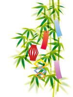 Tanabata [1992301] Bamboo