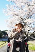 Grandma in your walk Stock photo [2107625] Grandma