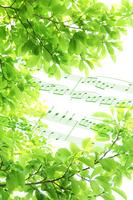 Wakaba and music Stock photo [2109156] Wakaba