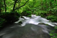 Oirase stream Stock photo [2109916] Fresh