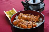 Hitsumabushi of eel Stock photo [2207010] Eel