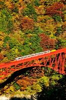 Kurobe Gorge and truck train of autumn leaves Stock photo [2208011] Kurobe