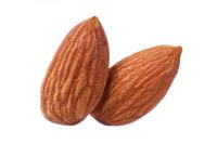 Almond Stock photo [2209768] Almond