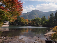 Autumn of gold scales Lake Stock photo [2211125] Yufuin