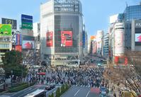 Shibuya scramble intersection where people come and go Stock photo [2466309] Shibuya