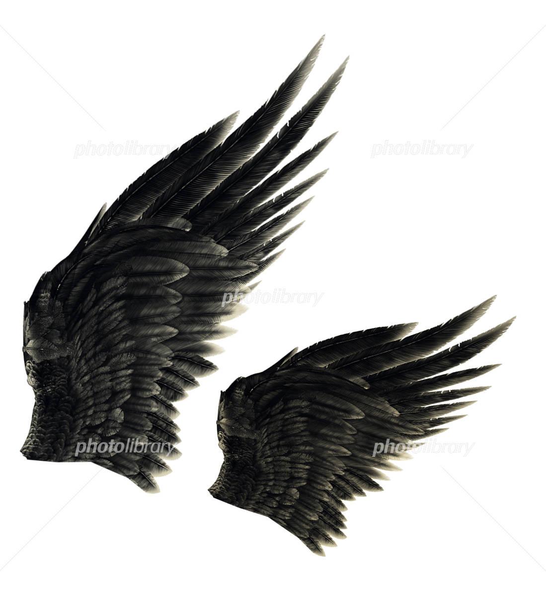 黒い翼 イラスト素材 2589587 フォトライブラリー Photolibrary