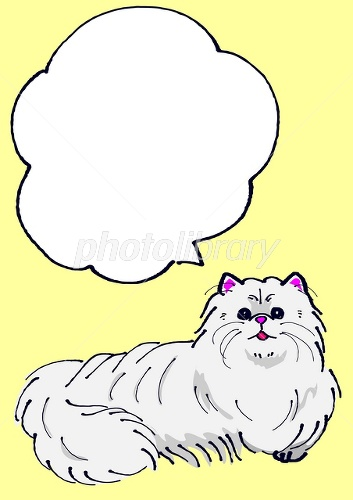 ペルシャ猫のメッセージカード イラスト素材 [ 2589985