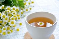 Herbal tea Stock photo [2583794] Herbal