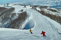 Ski snow Stock photo [2592584] Snow