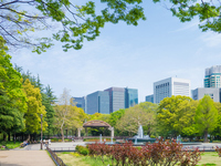 Spring Hibiya Park Stock photo [2593224] Hibiya