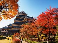 Autumn leaves of Matsumoto Castle Stock photo [2686149] Matsumoto
