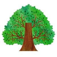 Big tree [2687319] Big