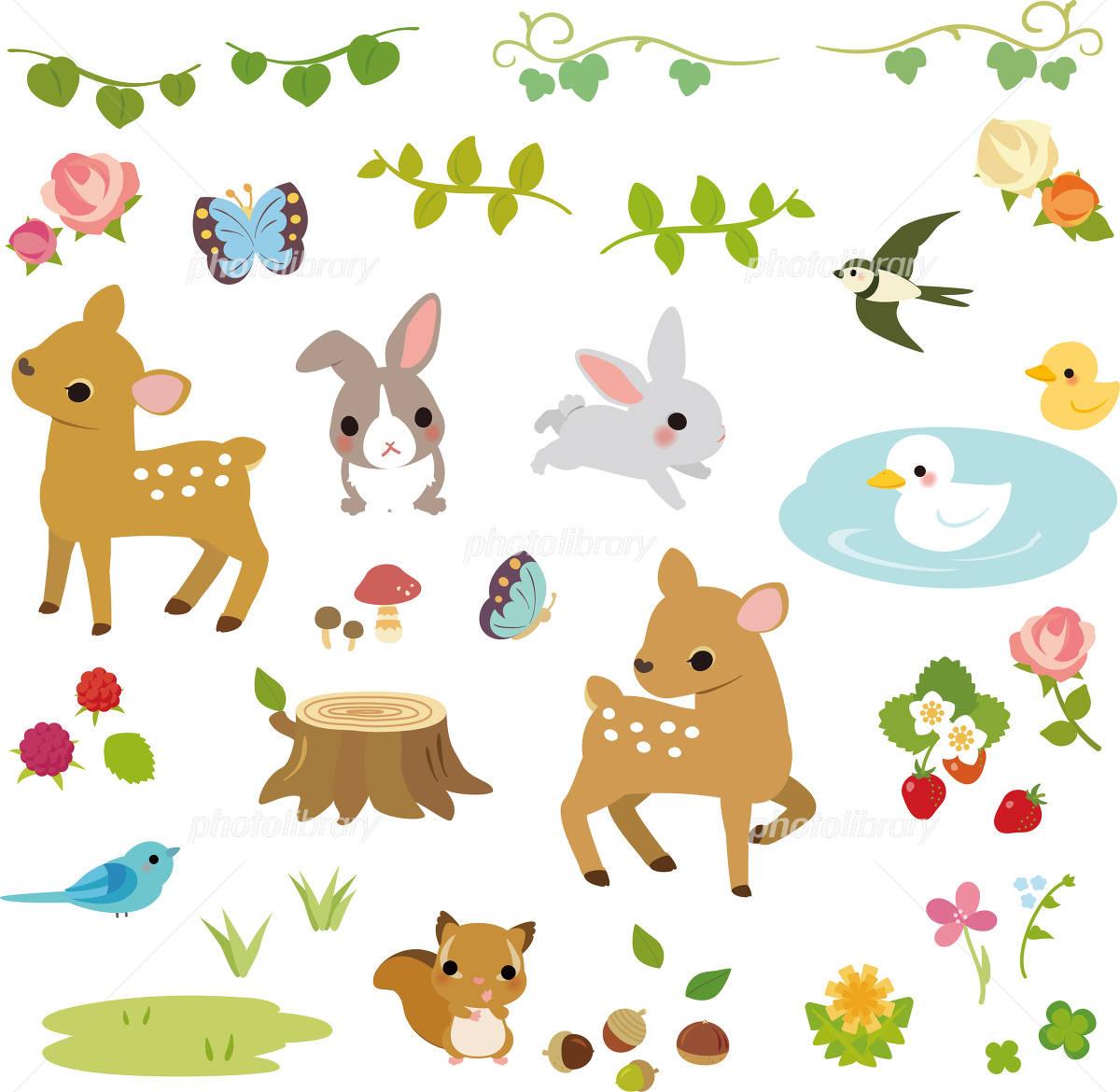 森の小動物と草花 イラスト素材 2856674 フォトライブラリー