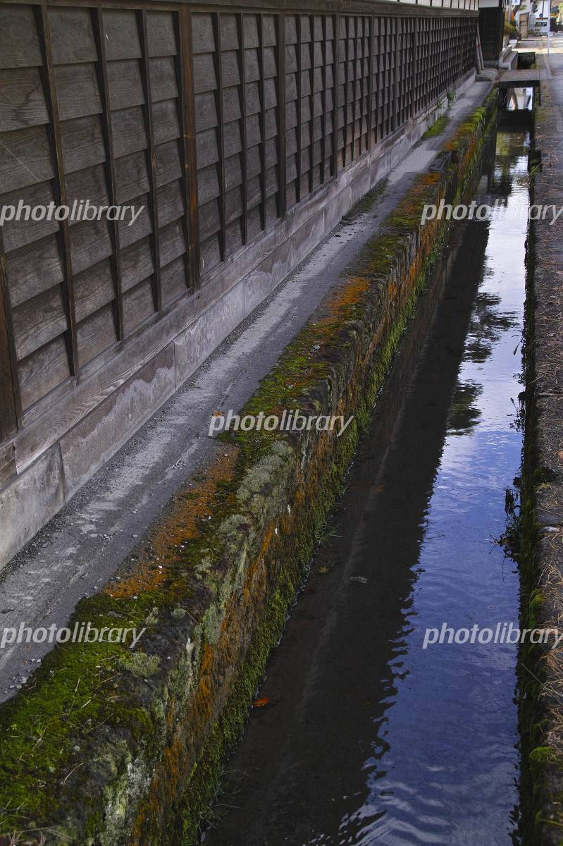 上杉記念館北側の用水路と苔 米沢市 写真素材 [ 2858320 ] 無料 ...