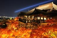 Kiyomizu Temple night light up 2013 Stock photo [2855114] Kiyomizu-dera