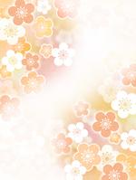 Japanese paper plum [2860538] Plum