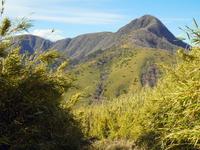 Slope of Mount Ashigara and Hakonedake Stock photo [2860678] Mount
