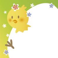 Newborn chick [2932179] Chick
