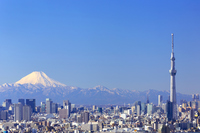 Tokyo Sky Tree and Mount Fuji and I hope downtown streets of Tokyo. Tokyo