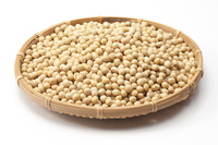 Containing soybean in colander Stock photo [3022997] Soybean