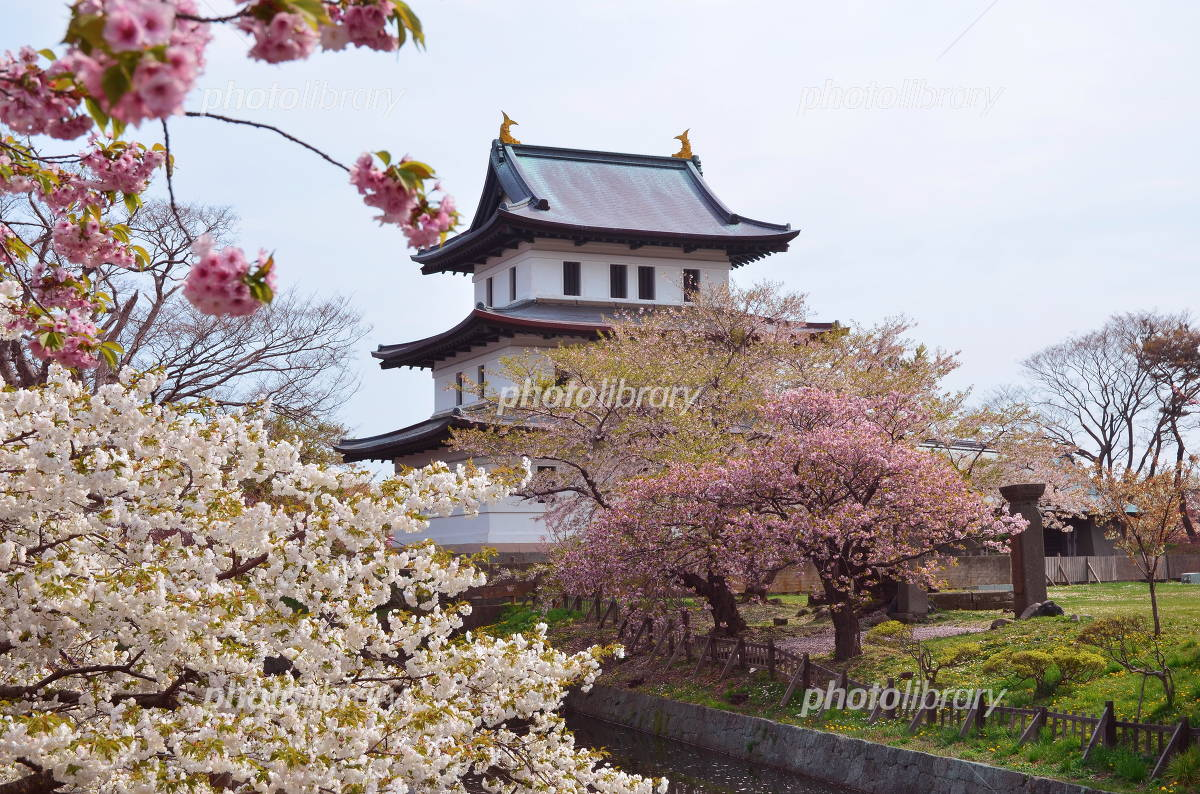 Matsumae Castle Photo