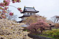 Matsumae Castle Stock photo [3107735] Matsumae