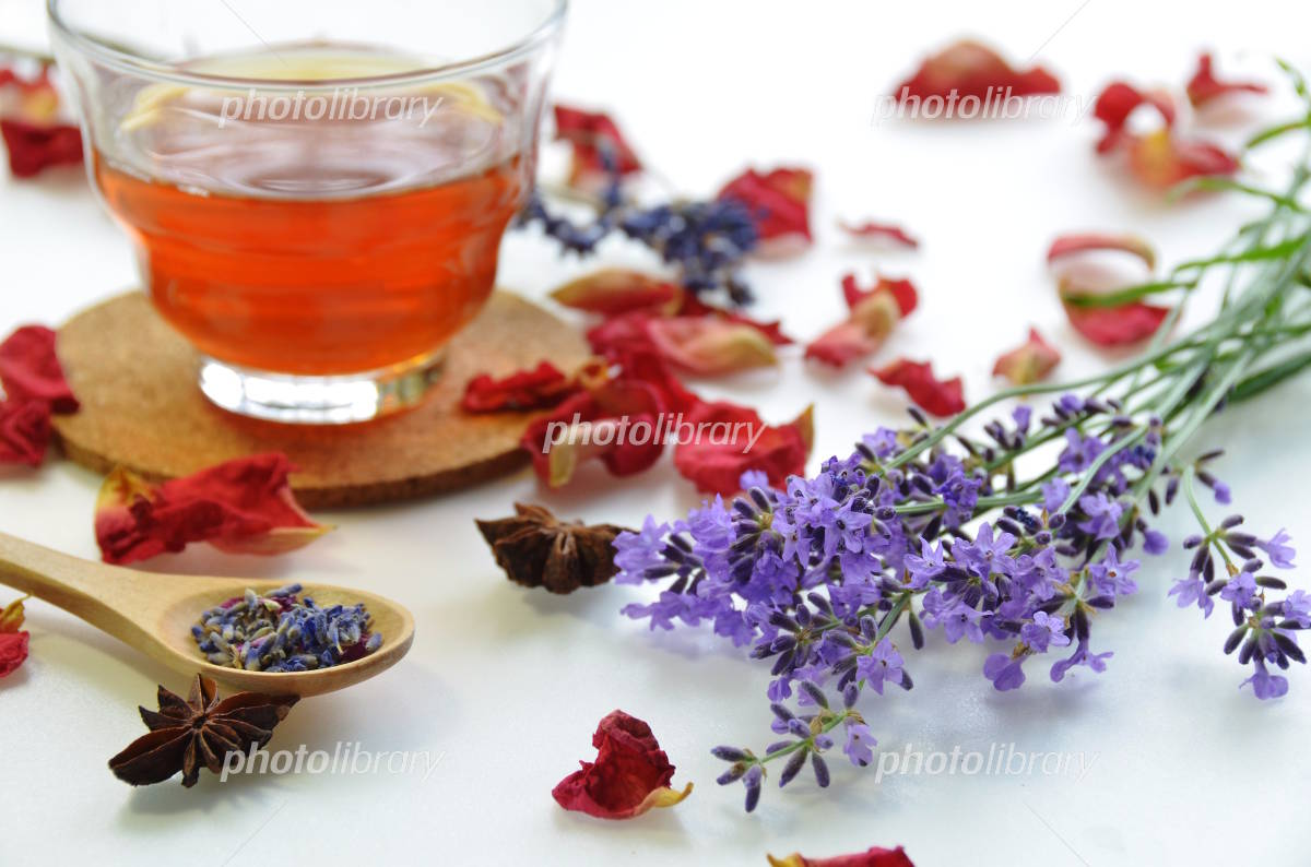 Lavender and tea Photo