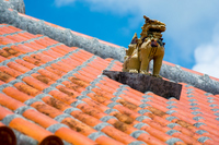 Red tile and Schiesser Stock photo [3304929] Shisa