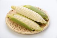 White corn Stock photo [3309175] Corn