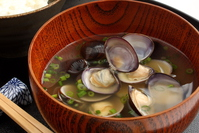 Clam shell miso soup taurine up Stock photo [3309533] Freshwater