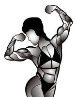 Bodybuilding [3312949] Bodybuilding