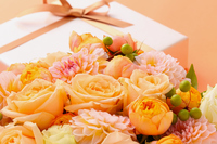 Roses bouquet and gifts Stock photo [3397379] Rose