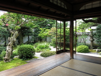 South of the garden of Koizumi Yakumo former residence (Herun former residence) Stock photo [3397590] Koizumi