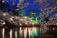 Cherry blossoms of Takada park Stock photo [3402223] Takada