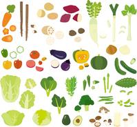 Familiar vegetables [3406554] Vegetables