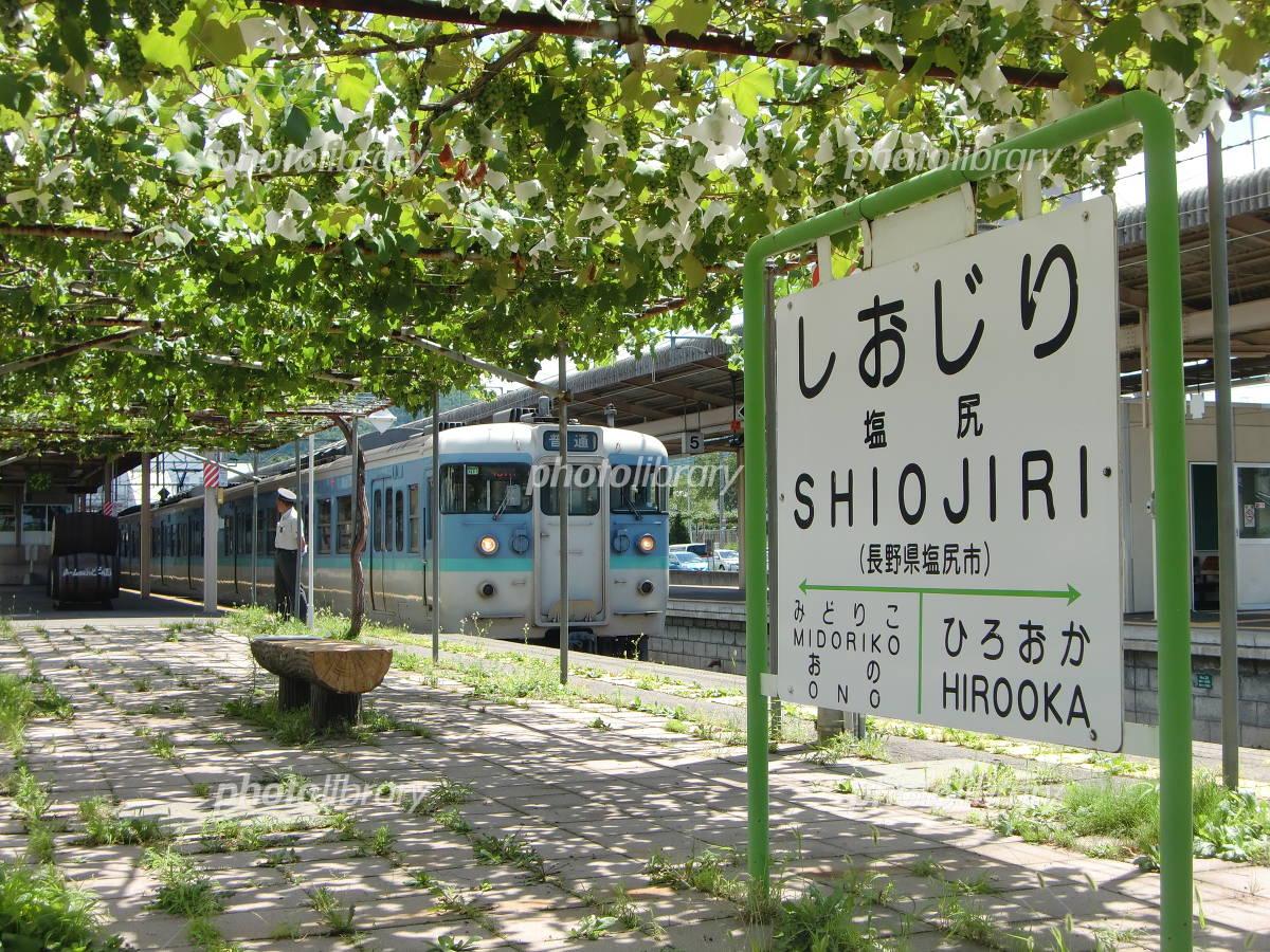 日本で唯一駅構内にぶどう棚があ...