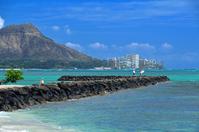 ハワイの夏休み