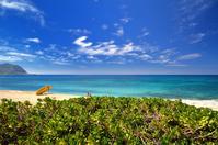 オアフ島のヨコハマビーチ