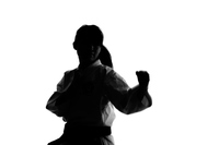 Female silhouette that the Shorinji Kempo Stock photo [3501394] Person