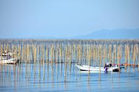 Seaweed farming of the Ariake Sea Stock photo [3502811] Sea