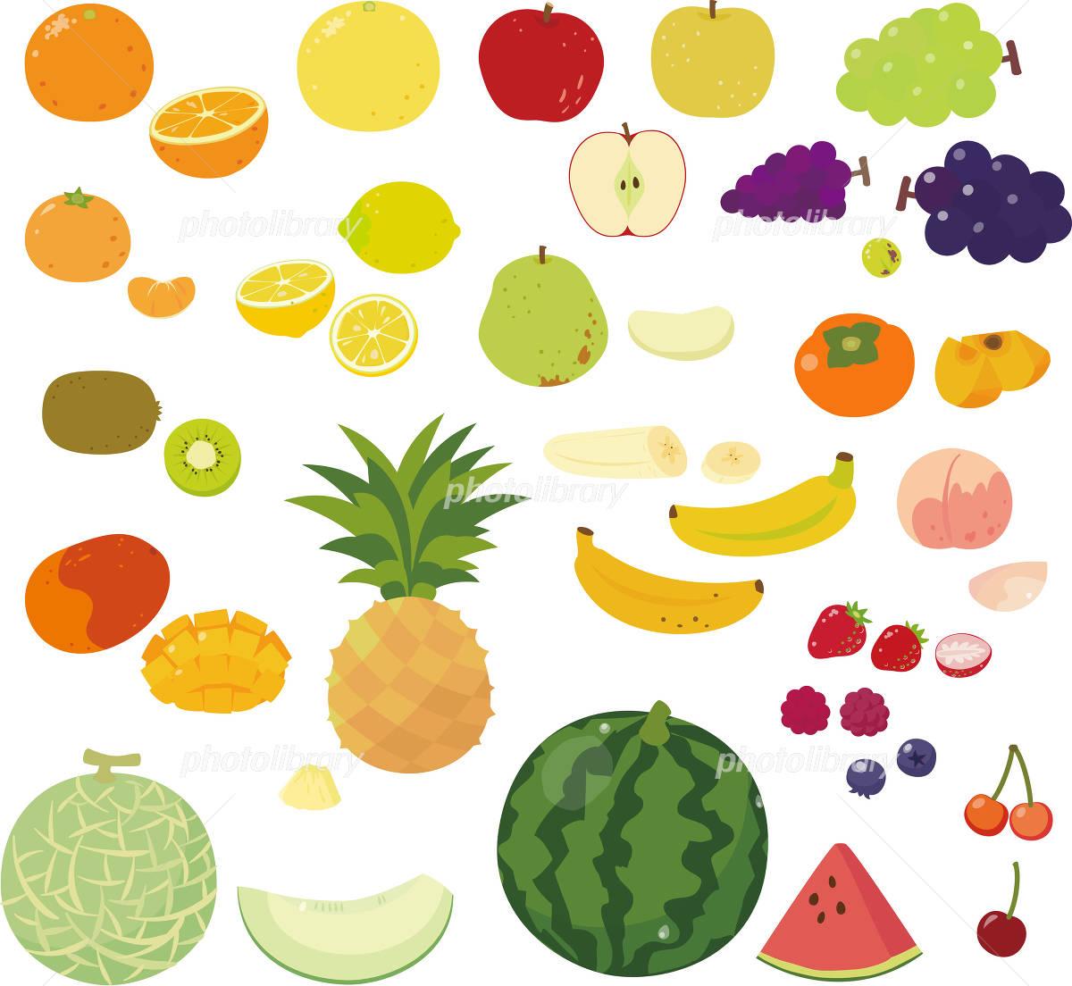いろいろな果物 イラスト素材 [ 3601062 ] - フォトライブラリー ...