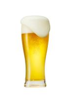 Beer Stock photo [3710035] Beer