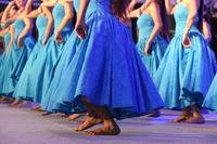 Hawaiian Hula Dancers Stock photo [3930394] Dance