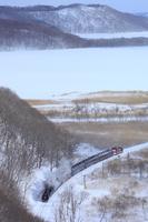 SL winter marsh No. Stock photo [4010477] SL