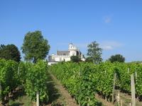 Bordeaux vineyards Stock photo [4015840] Chateau