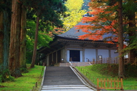 Autumn leaves of World Heritage Hiraizumi Chusonji Stock photo [4101395] Hiraizumi-cho
