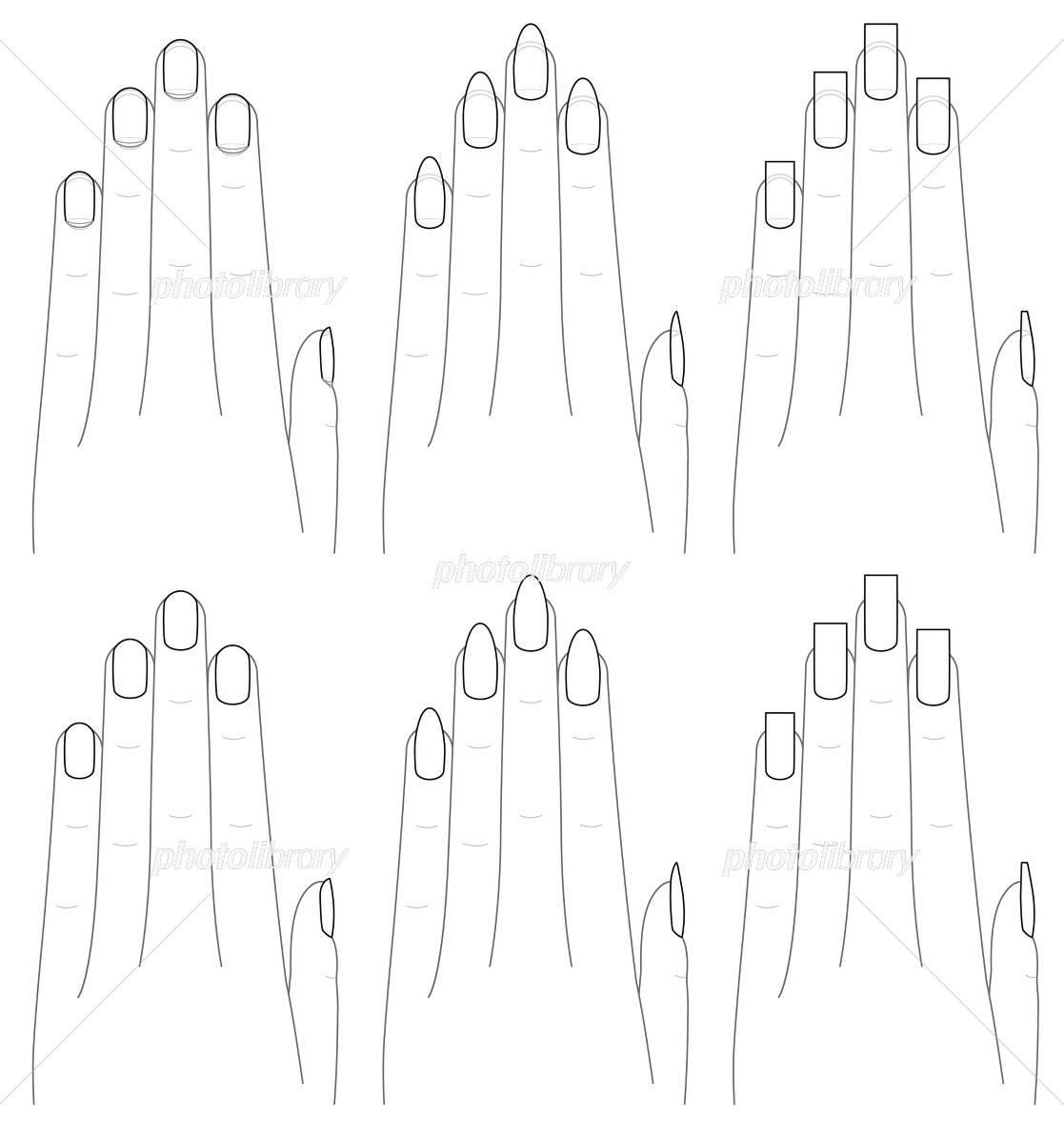 手と爪の形 イラスト素材 [ 4162657 ] , フォトライブラリー