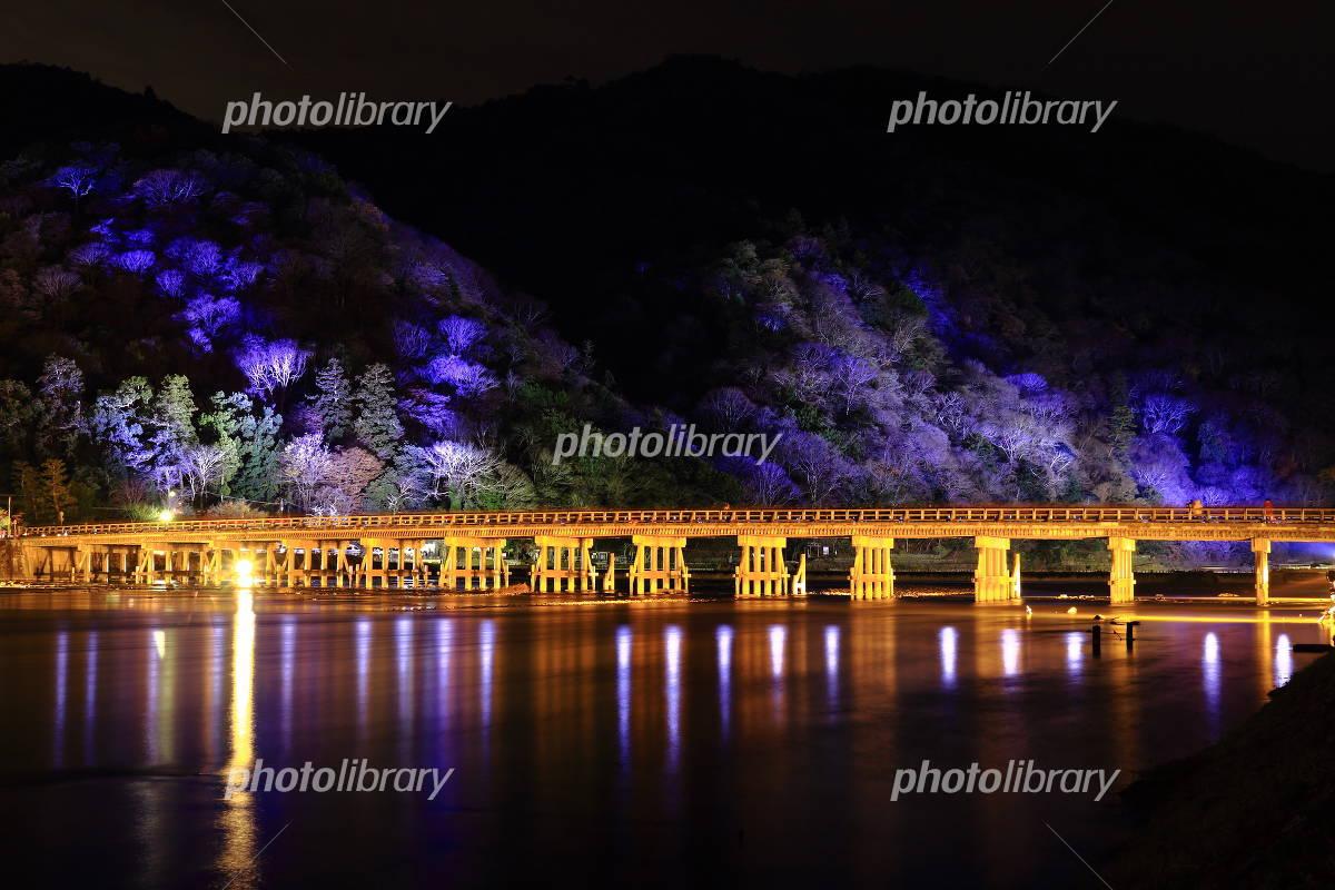 Kyoto Arashiyama Hana light path Togetsukyo light up Photo